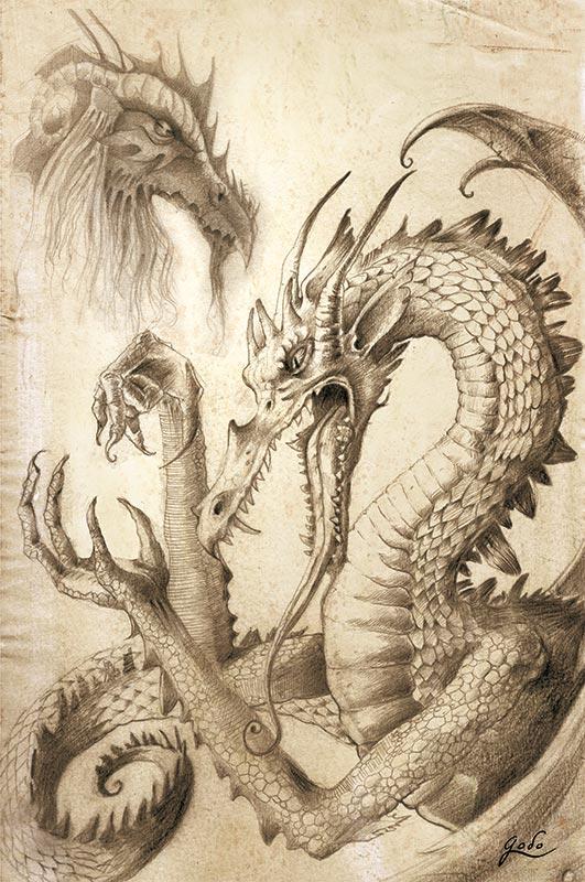 illustration de dragon, et étude de dragon réalisées au crayon par godo