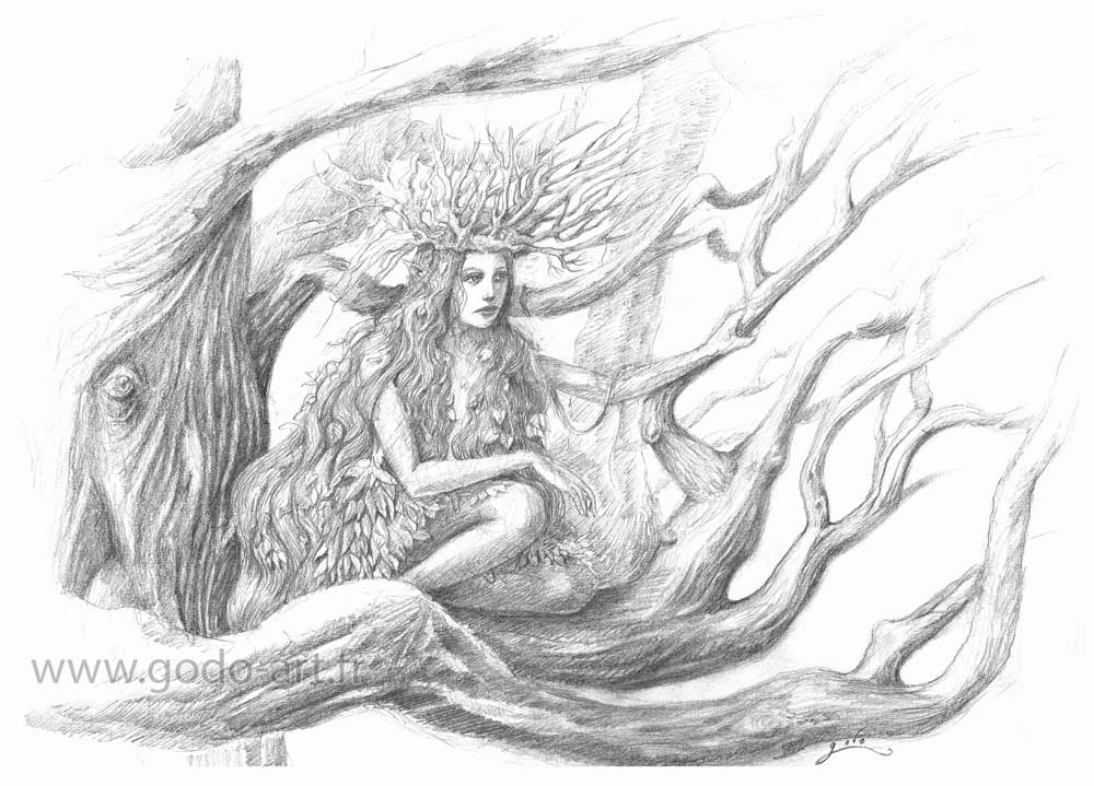 dryade-illustration-godo