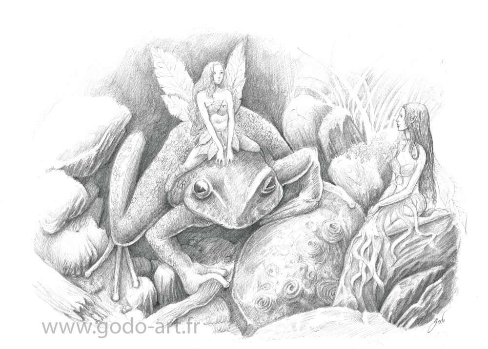 fée-grenouille-illustration-godo