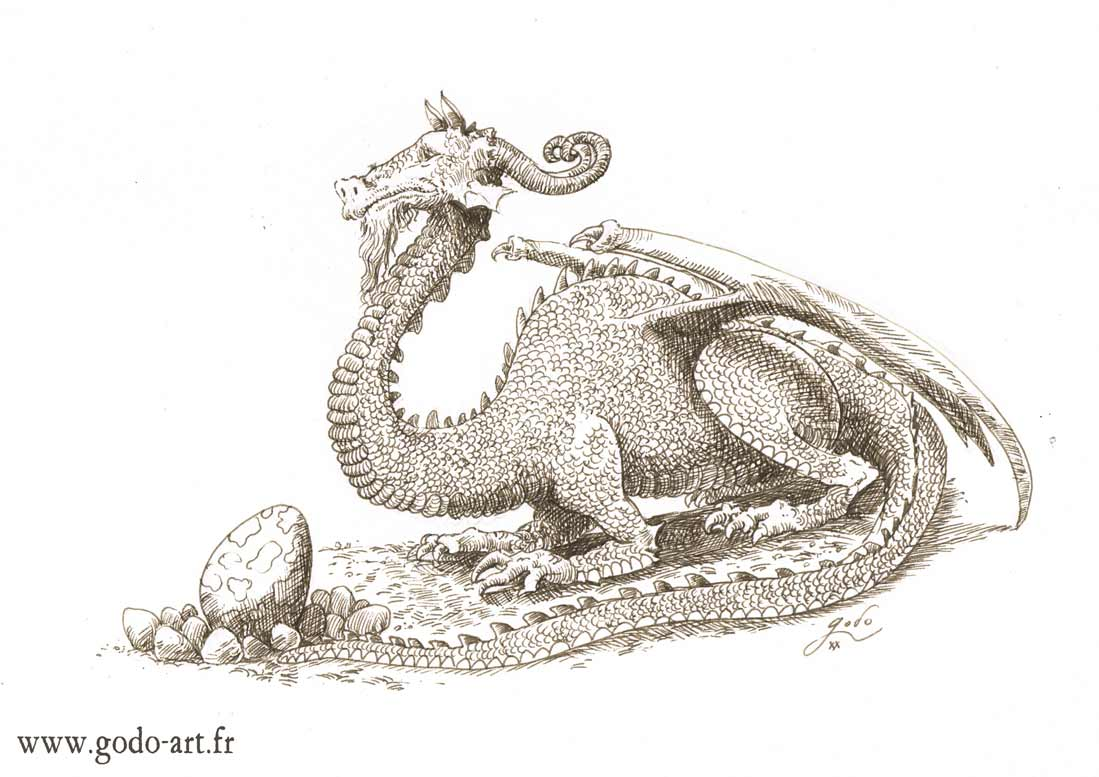 dessin de dragon et de son oeuf, illustration godo