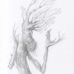 sylvebarbe ou treebeard et gandalf dessin crayon