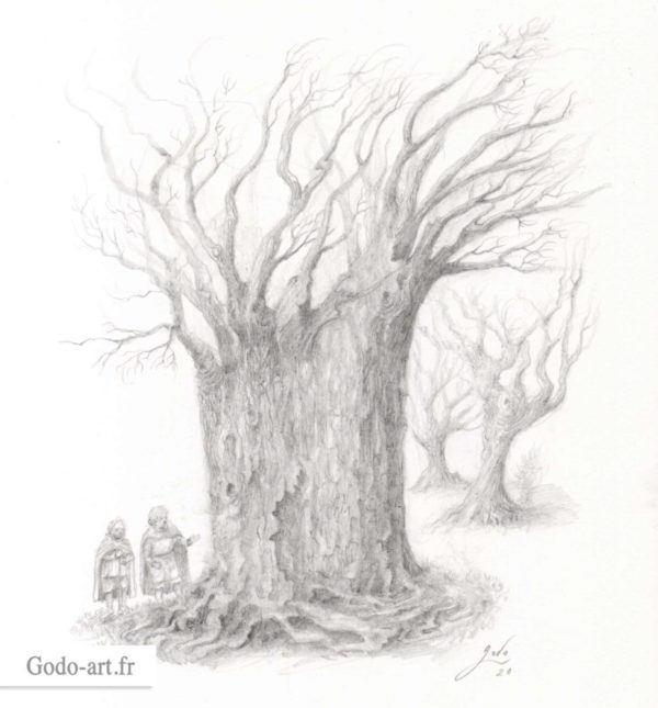 hobbit et huorn