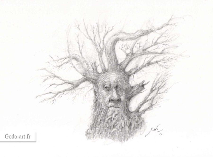 dessin d'un visage de Ent